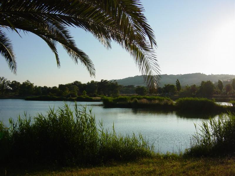 altidona lago palma
