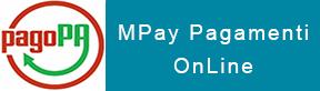 my_pay